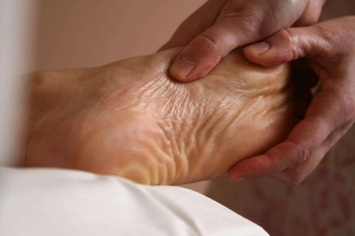fisioterapia geriatrica