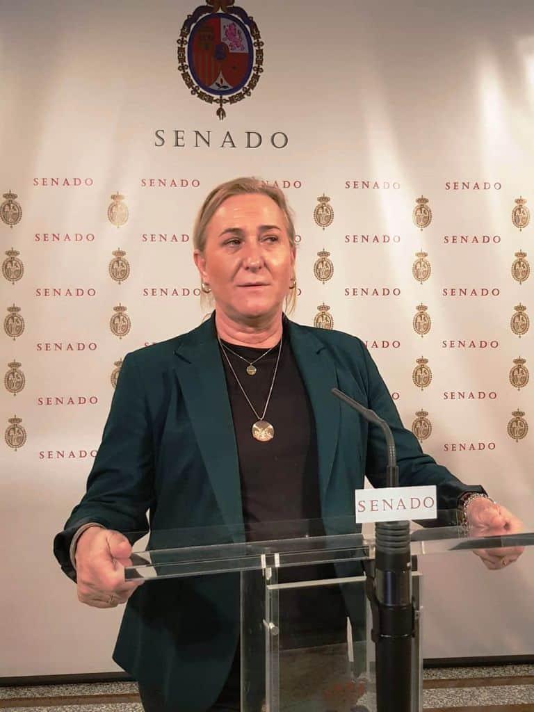 El PSOE impulsa la formación en comercio electrónico en coordinación con las CCAA, Diputaciones Provinciales y Ayuntamientos 1