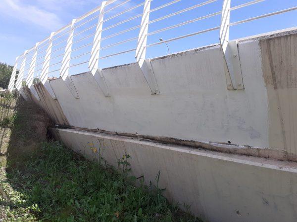 Limpieza pasarela peatonal (3)
