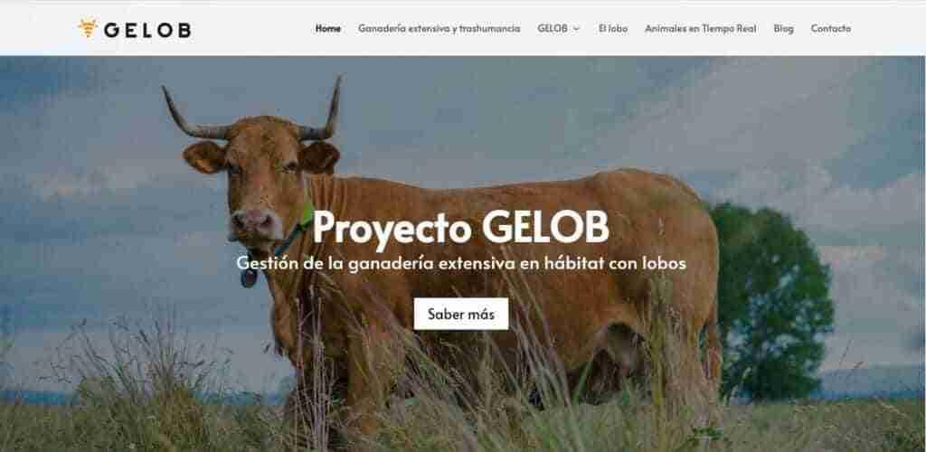 Soluciones tecnológicas avanzadas para ganaderos de Castilla-La Mancha 1