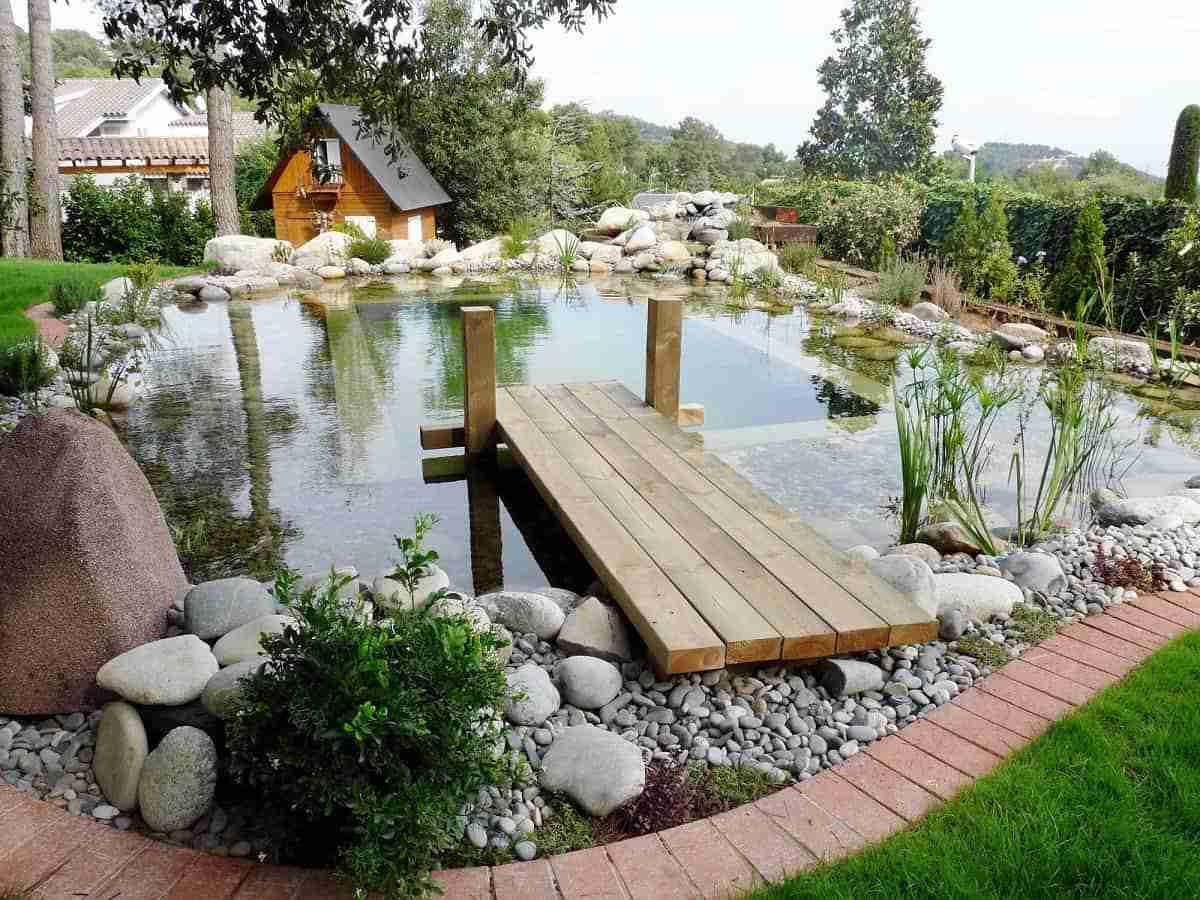 Piscinas naturales: ventajas, inconvenientes y tipología 16