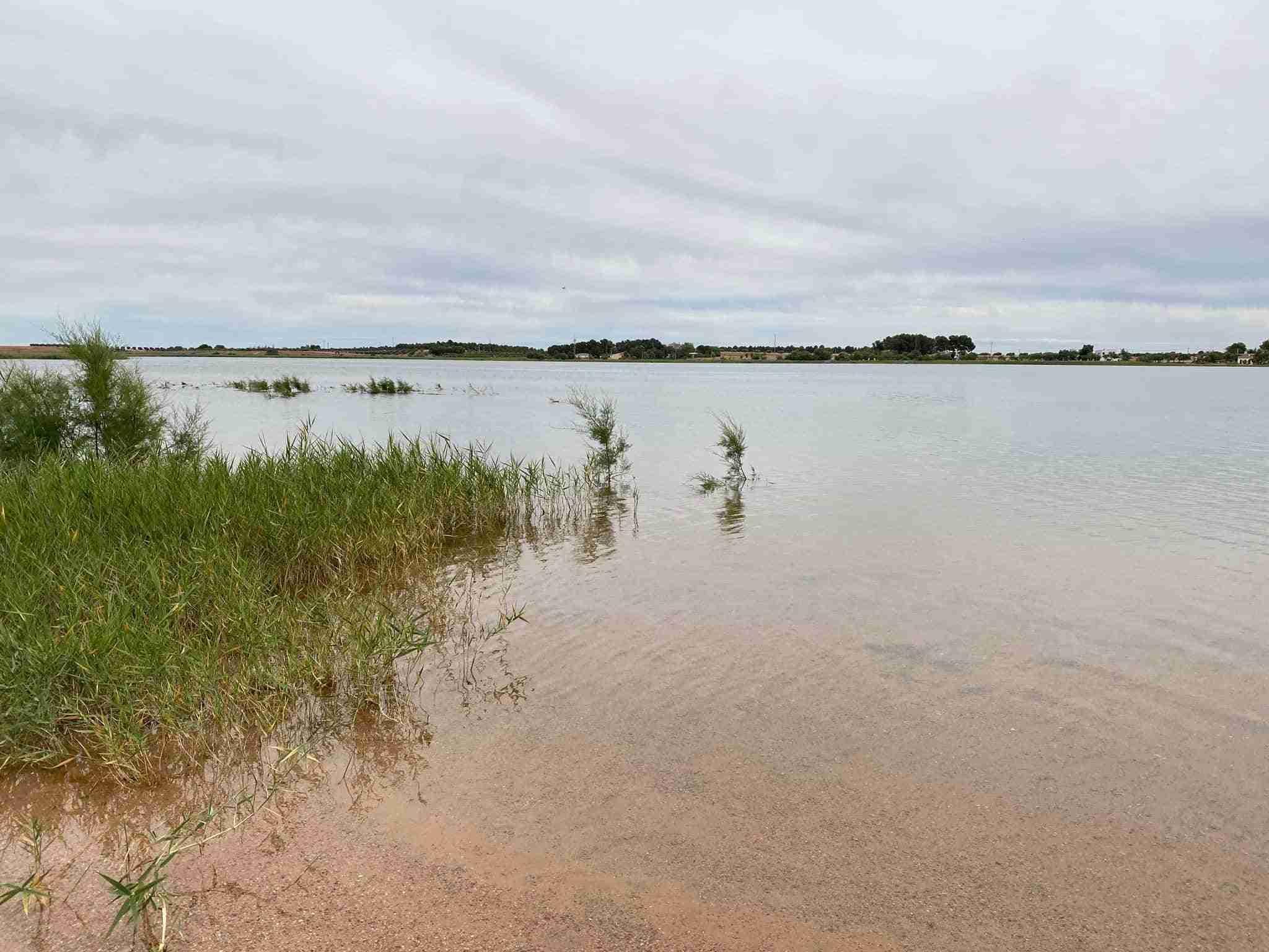 Ciudadanos trasladará a las Cortes de Castilla-La Mancha la problemática de las Lagunas de Villafranca 3