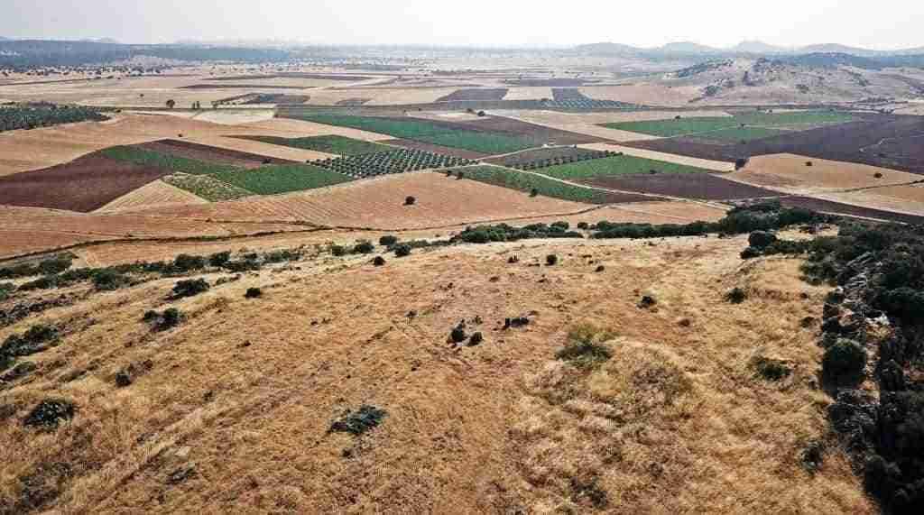 Tierras de Libertad distribuye más de un millón y medio de euros en Campo de Montiel con el programa LEADER 1
