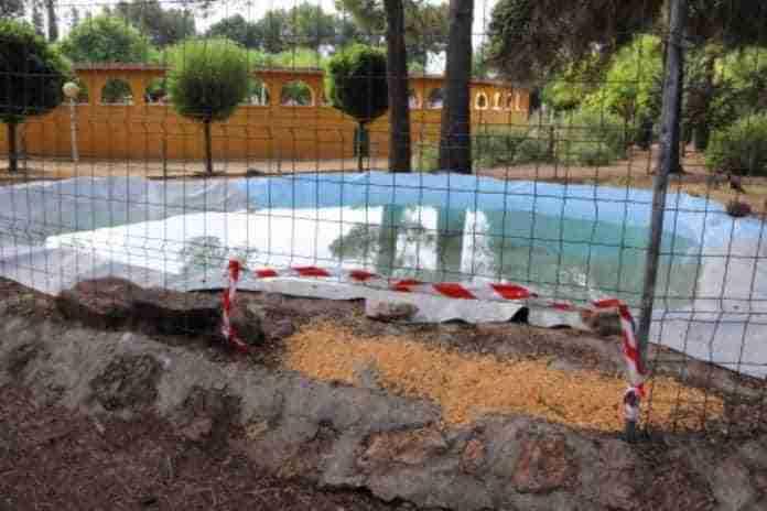 zonas de agua para patos parque manzanares