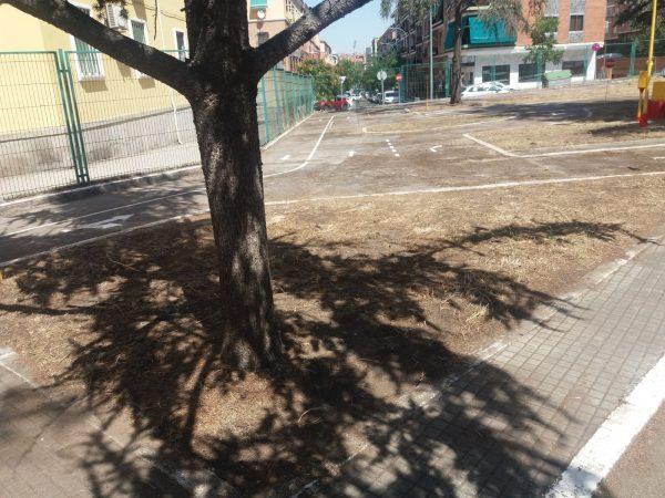 Limpieza parque escolar tráfico 05