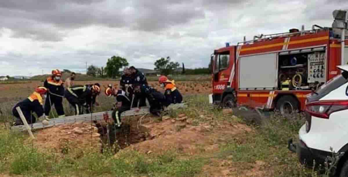 Bomberos del SCIS han realizado 34 intervenciones para rescate de animales en el último trimestre 3