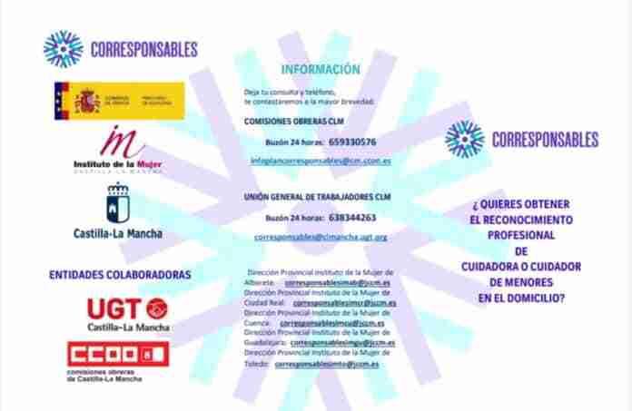 acceso bolsas de cuidado profesional en domicilio puertollano