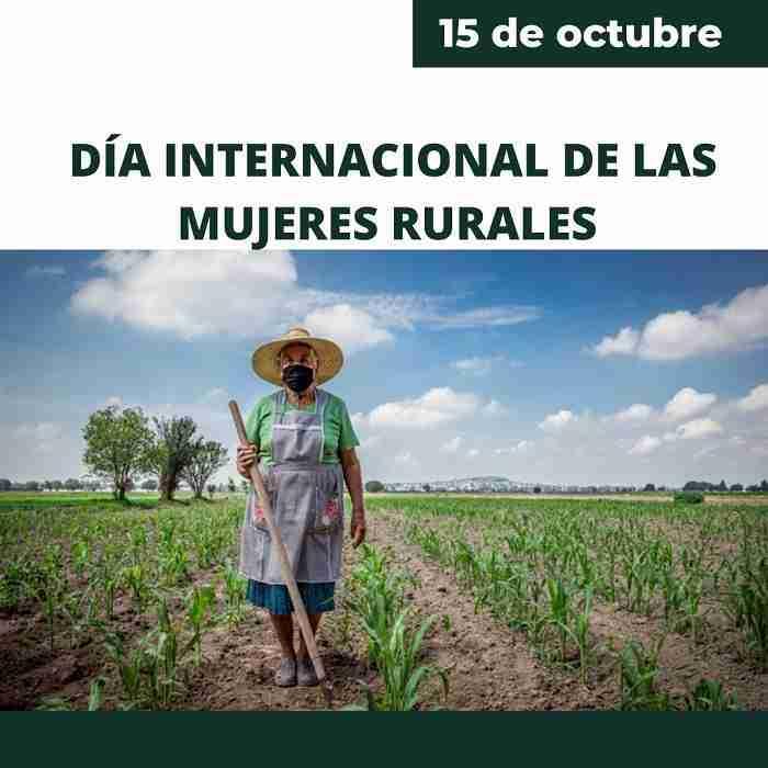 Taller sobre móviles, apertura de la programación por el Día de la Mujer Rural 1